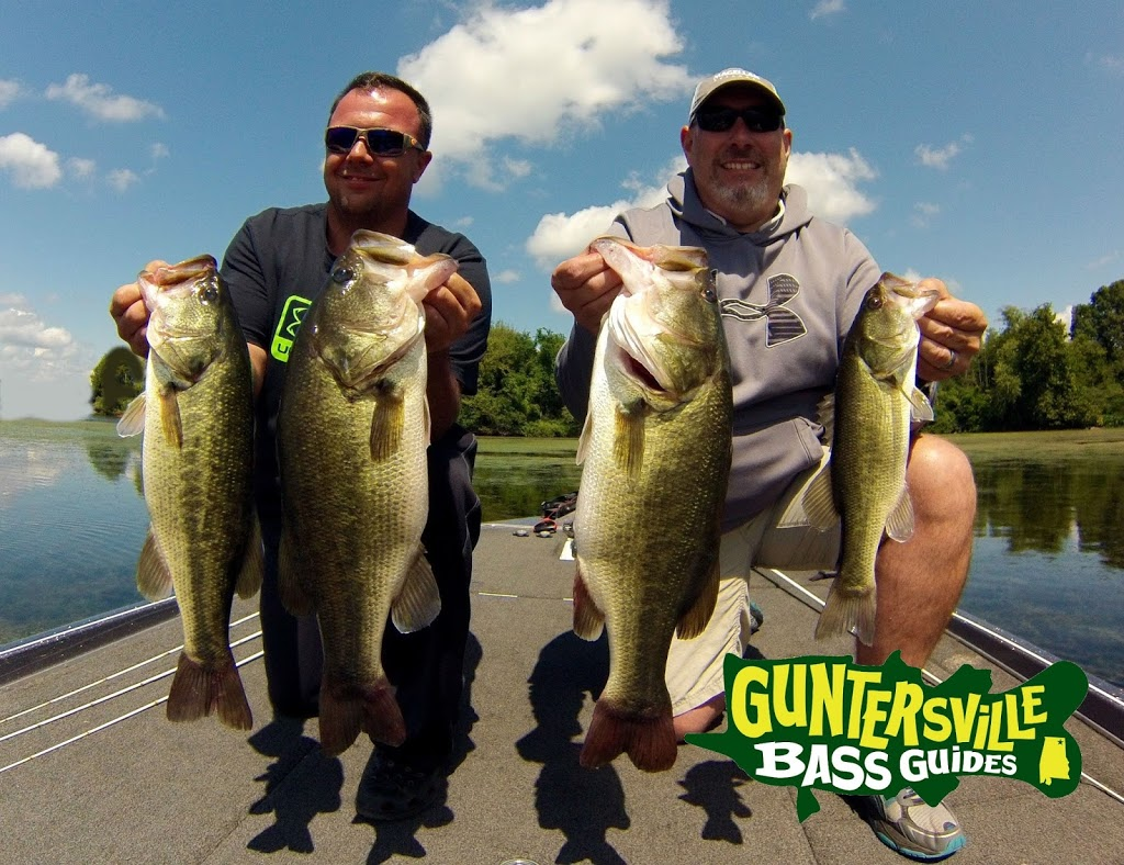 Why does september bring tuff fishing or is it all in our for Lake guntersville fishing reports