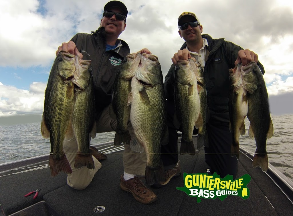Great week for Fishing report lake guntersville