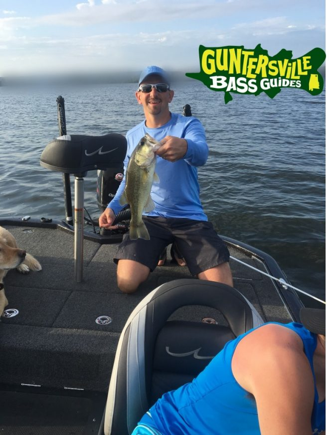 Lake guntersville bass fishing report july 8th for Fishing report lake guntersville