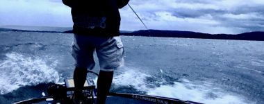 Plenty Of Fish On Lake Guntersville